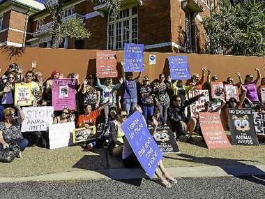 SPEAKING FOR ANIMALS: Animal rights protesters at Gladstone Magistrates Court.