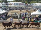 Entries open for Rockhampton's Beef 2015
