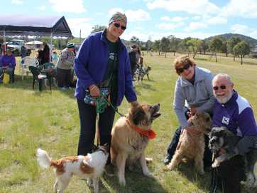 Cheryl Roberts, Christine Storrs and Kel Dominey with their pets at the 100 Paws Walk event, which was held at the Connor St dog off leash area on Saturday Photo Erin Smith / Stanthorpe Border Post