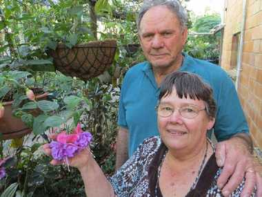 WORK PAYS OFF: Mike and Mavis Silver's Wolvi garden is a tribute to their love of rhododendrons.