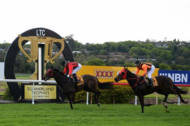 Uno Five, ridden by Tegan Harrison winner of the Lismore Cup 2014.