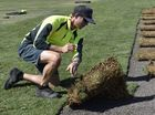 THERE is a green top at Heritage Oval after a new wicket block was put down at Toowoomba's premier cricket ground.