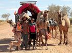 Ballina woman travels with camels from Alice to Oodnadatta