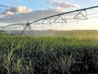 GROWERS in the Mackay region would greatly benefit from irrigating crops but it's simply too expensive.