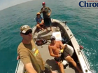 Three strangers, a grouper and a bull shark