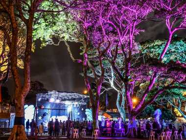 MAGIC HAPPENS: Park Beach Reserve will become a fairlyland of colourful lights during Saturday night's Party in the Park.