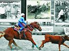 TIMES PAST: The stands might be full, but a lot of legends will be missing from the rodeo arena and campdraft crowds this year, though the heroes of the past live on through their grandkids.