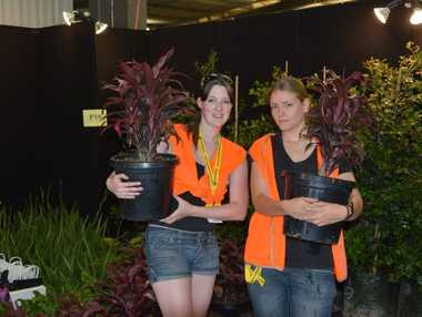 Setting up the Blade Landscape Designs stall is Nicky Hansel and Jasmine Cini ahead of the Toowoomba Spring Home Show and Camping and Leisure Expo.