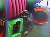 Police hunting for man after sexual assault of a five-year-old in Coffs Harbour