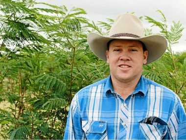 GREAT FEEDER: Hugh Rea has successfully trialled leucaena on his Central Queensland cattle property.