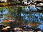 Reflections in the pools at Minyon Falls