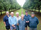 AWARD-WINNING: Macadamia growers from the Dorey family – Mark, Ray, Ken, Spencer, Col and Ron.
