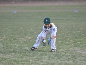 The T20 Junior Blast cricket competition for kids aged seven to 10 has been well received in Gladstone.