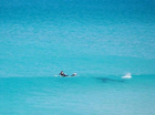 A SURFER says he did not realise how close a shark came to him in waves off Western Australia until he saw several photographs of the encounter.