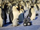 A ROBOT penguin has been accepted into a colony in Antactica so researchers can monitor the notoriously shy animals.