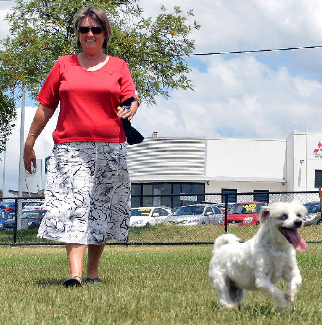 Free Dogs Caboolture