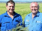 A NEW charity in north-west NSW is growing crops to raise funds for disadvantaged children in the region.