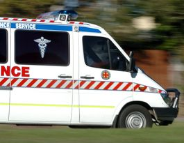 Man dead after ute and truck collide at Westbrook