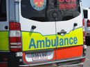 A TEENAGER was hospitalised last night after being bitten on the toe by a snake.