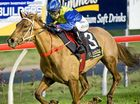 TOOWOOMBA five-year-old Tukiyo will be out to reward her patient connections if she gets the green light to chase a prized feature victory at Clifford Park tonight.