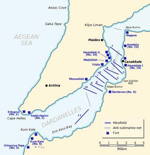 The Dardanelles defences in February/March 1915. The straits connected to the Sea of Marmara and the Black Sea, which were of strategic importance to the Allies.