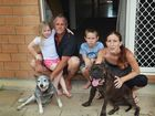 Southside Gympie renters, Jason Rees with his partner Peta O'Sullivan and their children David 10 years and Tarleaha 5 years with their family pets, Oi the 16 year old Blue Heeler and Gizmo theyoung English Staffie. Most rental homes will only allow one dog so it may be that Oi who has been Jason's best mate may have to be put down on Friday. Photo: Greg Miller / Gympie Times