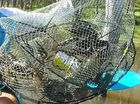Ghost fishing problem grows