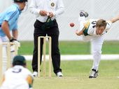 THE third annual Kinnane Memorial Cricket Carnival has proven a hit once again.