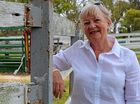 DEDICATED: Gillian Boucher has rebuilt the fruit and vegetable section of the Stanthorpe Show.