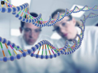 DNA clues could predict when people will die