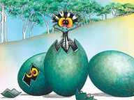 STRIPEY – The Eggscellent Adventures of an Emu Chick!  (Schools Show)