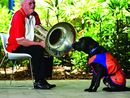 THE services of special pups like Champ rely on extraordinary people like John Loxton to remain viable.