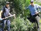 The POLAIR helicopter has been hovering over the Granite Belt region, with a joint operation between Stanthorpe, Warwick and Brisbane police leading to a drug bust worth $250,000. Four arrests have been made so far with police seizing two pistols, one with a silencer in the Sugarloaf area, and 36 marijuana plants from a property on Ellwood Rd, The Summit on Monday.