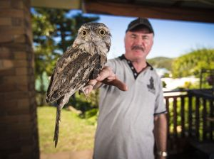 Gladstone District Wildlife Carer Max Anderson is looking forward to learning more about the husbandry, rehabilitation and first aid for birds at the Bird Husbandry Workshop. Photo Luka Kauzlaric / The Observer