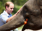 Prince William's tour of China ends in embarrassment