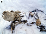 Mummified bodies discovered on Mexican peak