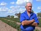 HOPELAND farmers George and Pam Bender are desperate for answers, as the cause of toxic underground gases found in soil near their property remains clouded.