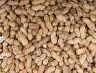 Man dies from peanut allergy: restaurant owner charged