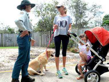 IN DANGER: Kylie Kerr with her three-year-old Grace, are urged to leave a Casuarina cycleway by a National Parks and Wildlife Pest Management Officer Lisa Wellman on Monday afternoon.