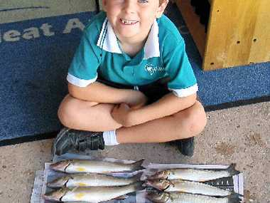 WELL DONE: The winner of Davo's Junior Fish of the Month Competition is Khy Lawrence with this great feed of whiting he and h