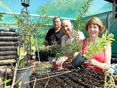 ON THE MOVE: Bribie Butterfly Volunteers Incorporated members Peter Hunt, Ray Archer and Leila Forbes.