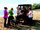 A NEW all terrain vehicle will patrol Sunshine Coast beaches to keep an eye on unruly dogs.
