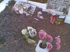 Vandals desecrate graves at Mackay Cemetery
