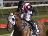 TRY 'N' Catch Me said just that to his rivals in the Tyrrell's Wines Class 3 Handicap (1210m) at Clifford Park on Saturday night.