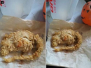 "IT TURNED stomachs worldwide, but there is now doubt over whether a man ever really found a ""rat"" in his bucket of chicken bought from KFC."