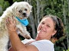 COAST animal lover Natalie King knows how hard it is to surrender a beloved family pet.