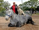 Karen Foran with Kamilaroi the horse and Breeze the dog. Photo: Blainey Woodham / Tweed Daily News