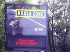 Tweed Shire Council has moved to further protect koalas with new road signage designed to change driver behaviour.