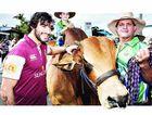 Maroons mania hits north Queensland
