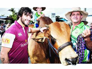 MAROON POWER: Johnathan Thurston meets Cambil Mr Incredibull, the Brahman, James Camm (top) and Lawson Camm (right) during the Maroons fan day yesterday.